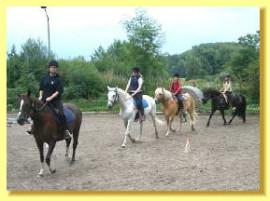 Wanderritte, Tagesritte, Ausritte, Natural Horsemanship